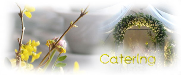 CATERING ΒΑΠΤΙΣΗΣ